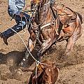 Cowboy Ropes Calf  by James Gordon Patterson