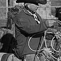 Cowboy Signature 14 by Diane Bohna