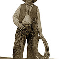 Cowboy With Woolies Cowboy Hat 1900 by California Views Archives Mr Pat Hathaway Archives