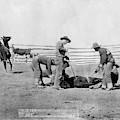 Cowboys, 1888 by Granger