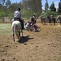 Cowboys At The Branding by Steve Scheunemann