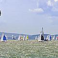 Cowes Week Isle Of Wight by Terri Waters