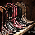 Cowgirl Boots Collection by Olivier Le Queinec