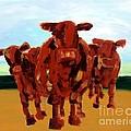 Cows by Lidija Ivanek - SiLa