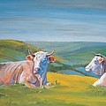Cows Lying Down Painting by Mike Jory