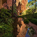 Coyote Gulch Canyon Reflection - Utah by Gary Whitton