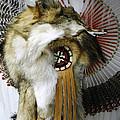 Coyote Headdress 1 by Lovina Wright