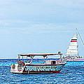 Cozumel Excursion Boats by Debra Martz