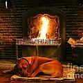 Cozy By The Fire by Carol Groenen