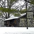 Cozy Cabin by Teresa Schomig