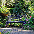 Cozy Southern Garden Bench by Carol Groenen