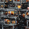 Crab Pots by Brandon Bourdages
