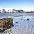 Crab Trap Washed Ashore by Joan McCool