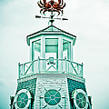 Crabby Weathervane by Marilyn Hunt