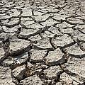 Cracked Ground 4 by Nicolas Van Weegen