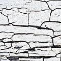 Cracked Wood Pattern by Tom Gowanlock