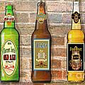Craft Beer Collection On Brick by Jean Plout