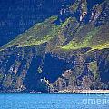 Craggy Coast 7 by Nancy L Marshall