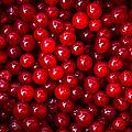 Cranberries - 1 by Alexander Senin