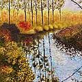 Cranberry Bog by Jason Williamson