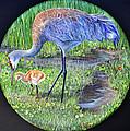 Crane Circle