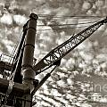 Crane by Olivier Le Queinec