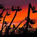 Cranes by Lynda Jeffers