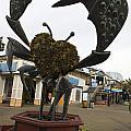 Crap Sculpture Fisherman's Wharf San Francisco by Jason O Watson