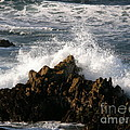 Crashing Wave by Bev Conover