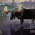 Craven Moose by Rob Corsetti
