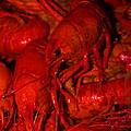 Crawfish by William Tegtmeyer
