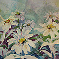 Crazey Daisies by Diane Wallace