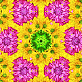 Crazy Daises - Spring Flowers - Bouquet - Gerber Daisy Wanna Be - Kaleidoscope 1 by Andee Design