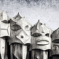 Creatures Of La Pedrera Bw by Joan Carroll