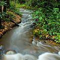 Creek After Big Storm by Frank Tozier