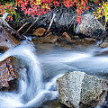 Creek At North Lake Ca_1 by Greg Kluempers