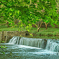 creek at Valley Forge by Rima Biswas
