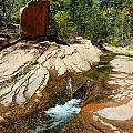Creek Crossing by Tam Ryan