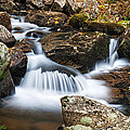 Creek In Maine Img 6377 by Greg Kluempers