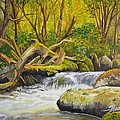 Creek In The Forest by Theon Guillory