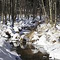 Creek In Winter by Cheryl Gayser