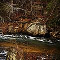 Creek by Mario Celzner
