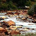 Creek No Paddle by Keith Spence