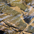 Creek Reflections by John Carroll