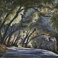 Creek Road Oaks by Patricia  Cluche