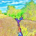 Creek by Roman Milert