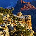Creeping Morning Canyon Light by Bob Phillips