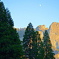 Crescent Moon Over Mountain by Marcy Wagman