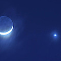 Cresent Moon In Conjunction With Venus And The Evening Star by Scott Lenhart