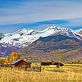 Crested Butte Autumn Landscape Panorama by James BO  Insogna
